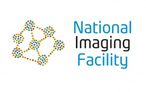 nif-logo-landscape-l
